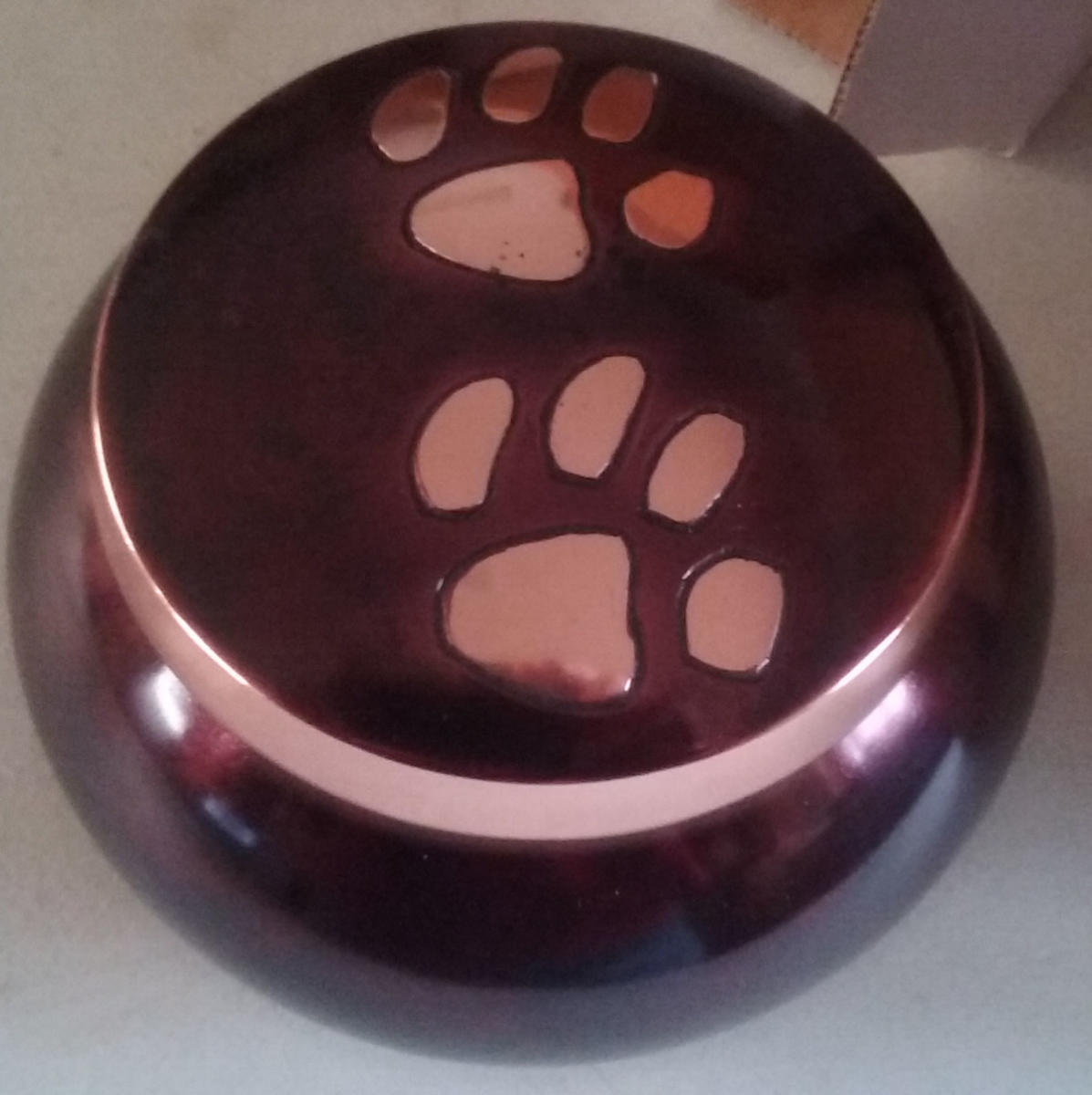 Odyssey Copper Urn with Pawprints