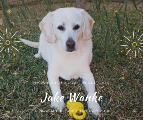 Jake Wanke