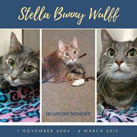 Stella (Stella Bunny) Wulff - 1 November 2004 -  6 March 2017