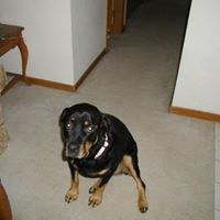 Raven Marie - O'Donnell - March 13, 2003 - November 26, 2010