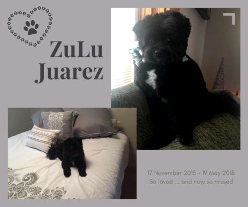 ZuLu Juarez
