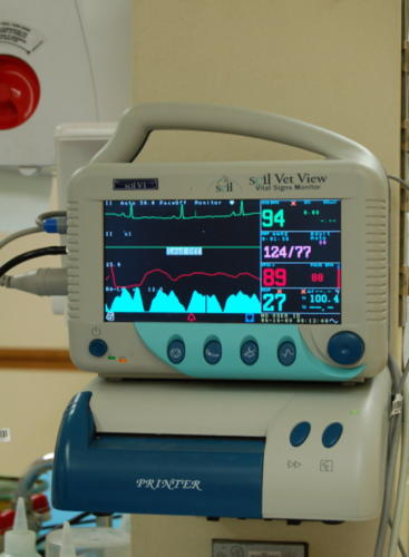 Anesthetic & Patient Monitoring